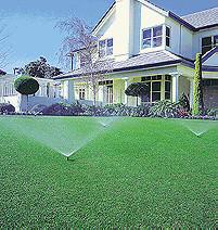 gazon, verticuteren, tegen, mos, zaaien, gras, tuin, aanleggen, onderhouden, gazon, onderhoud, gazononderhoud, aanleg, grasperk