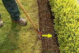 gazon, afsteken, gras, kanten, graskant, afboorden, tuin, tuinieren, bloemstukken, bloemschikken, bloemen, planten, kruiden, bomen, kuipplanten, bamboe, onkruid, vijver, tuinplannen, tuingids, tuinaanleg, fruit, groenten, tuinkrant, portaal, tuinarchitect, tuinkalender, informatie, snoeigids, plantengids, groene gids, aanleg en vijver, tuinartikelen