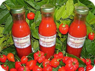 Recept voor het bereiden van hot sauce - 99 ways to suffer