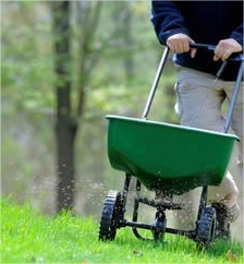 Gazon bemesten : waarop letten en hoe eraan te beginnen gras mesten voeden meststof gazon gazonmeststof toedienen tijdstip maand onderhouden