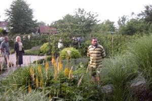 De geschikte planten kiezen voor uw tuin