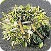 Een heerlijk geurende kruidenkrans voor in de keuken maken met kruiden uit de tuin