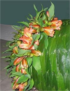 bladapplicatie, maken, bladeren, laurier, blad, applicatie, bloemstuk