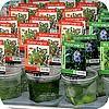drijfplanten, soorten, vijver, nut, dieren, vijvers, vissen, waterdieren
