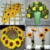 Zomerse_bloemstukjes