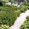 tuin aanleggen, bloemenborder, onderhoud, wieden, perkjes, winteronderhoud, tips
