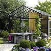 tuintrend, trends, tuin, mode, tuintrend, kleuren, bloemen, 2009, 2010, planten, kopen, buitenkeuken