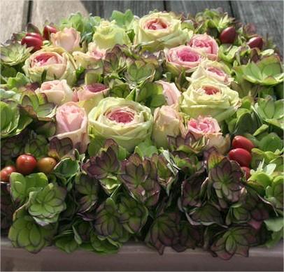 online bloemschikken, hortensia, rozen, trosrozen, soorten, drogen, bloemen, werkwijze, bloemstuk, herfst, goedkoop