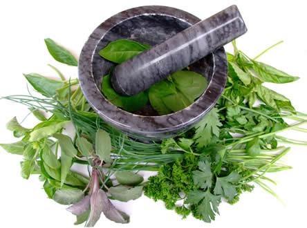 kruiden telen, kruiden uit eigen tuin, kruiden kweken, keukenkruiden, kruidenthee, zelf kruiden zaaien