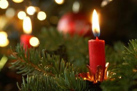Brandveilige kerstboom, brandgevaar verminderen, kerstbomen brandgevaar, kerstboomverbranding