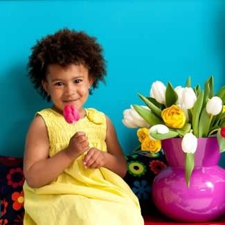 Tulpen plukken voor positieve energie, pluktulpen, tulpenmaand, tulpen in vaas, tulpen houden, tulpen bloeien