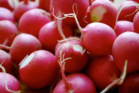 Radijzen in de zomer, gezonde radijzen, radijzen voedingsstoffen, voedingswaarde radijsjes, zomersalade met radijsjes