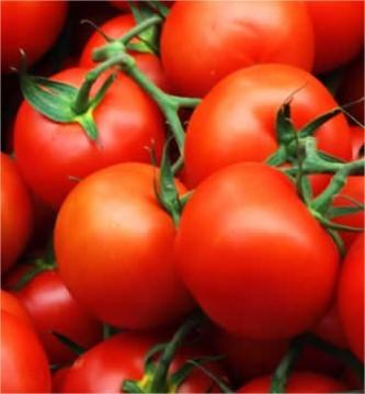 De kracht van tomaten