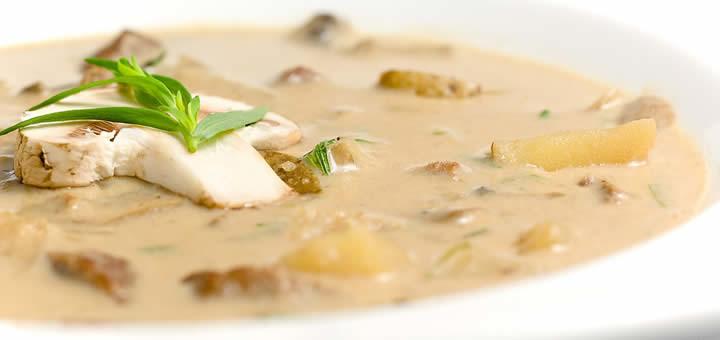 champignonrecepten, paddenstoelen klaarmaken, gerechten met champignons. Soep van champignonsoep maken of chamchampignonbouillon