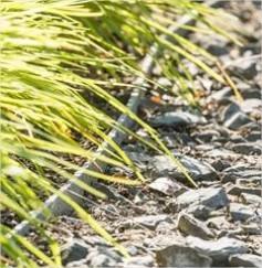 Tuinafboordingen met Ecolat, Ecoplanc & Ecopic