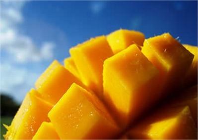 mango fruit, mango gezond, recept met mango, mangosaus maken, dressing van mango, scampi met mango