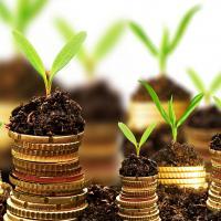 Tuinaanleg: tips en richtprijzen van hoveniers