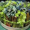 Bloemstuk maken met rabarber, hortensia en hop