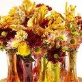 Fleurige chrysanten