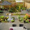 Tuinaanleg: Tuin zelf tekenen en aanleggen