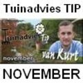 Tuinadvies TIP van de maand november