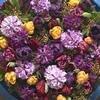 Laat je inspireren door de nieuwste bloembollentrends van 2010!