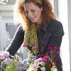 Bloemen plukken uit eigen tuin: De pluktuin