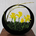 Ikebana bloemschikken