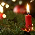 Vier een veilige Kerst met een brandveilige kerstboom.