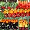 Onmisbare groenten in de keuken