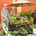 Plantenbeurs 1 april Sint-Lievens-Houtem