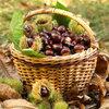 Welke kastanjes zijn eetbaar?