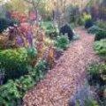 Tuinpaden onderhouden