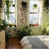 7 planten voor de slaapkamer