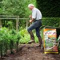 Aanplanten in je tuin? Nu is het moment.