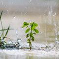 Tips bij veel regen