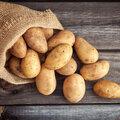 De lekkerste aardappelgerechten