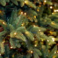 Een kerstboom uit kunststof: ecologisch en duurzaam