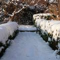 Geen winterdip in de tuin