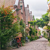 Groen rondom de woning: 7 voordelen