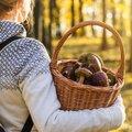 Koken in thema van Week van het bos