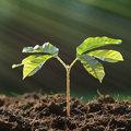 Technische tuinpraat - meten is weten