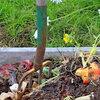 Zelf compost maken: milieuvriendelijk, goedkoop en doeltreffend