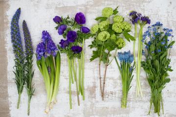 trendkleuren bloemen