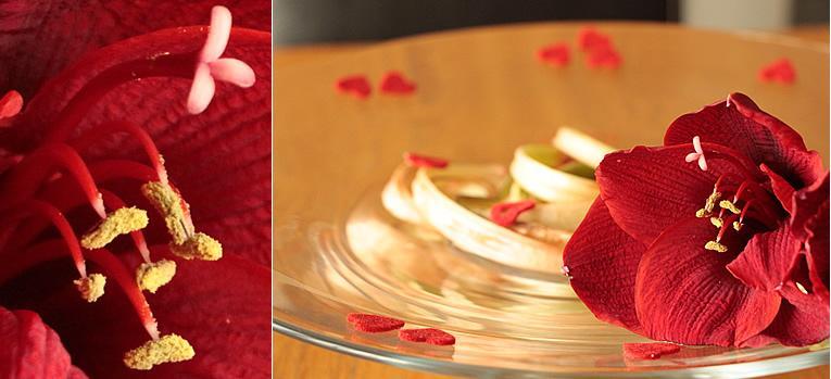 Valentijn in reepjes