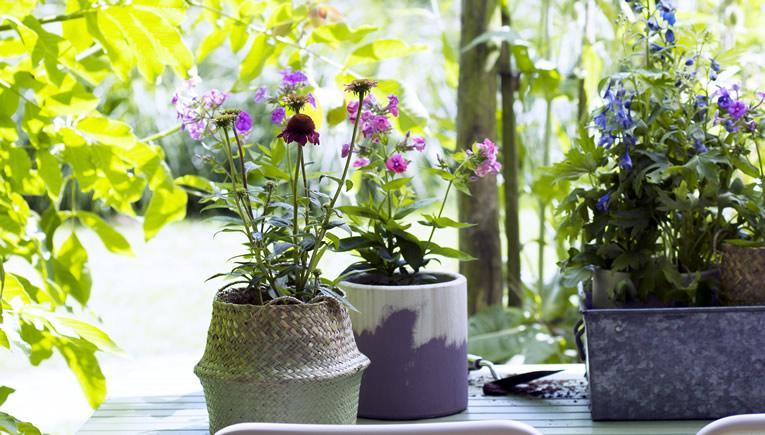 Zomerboeket uit eigen tuin