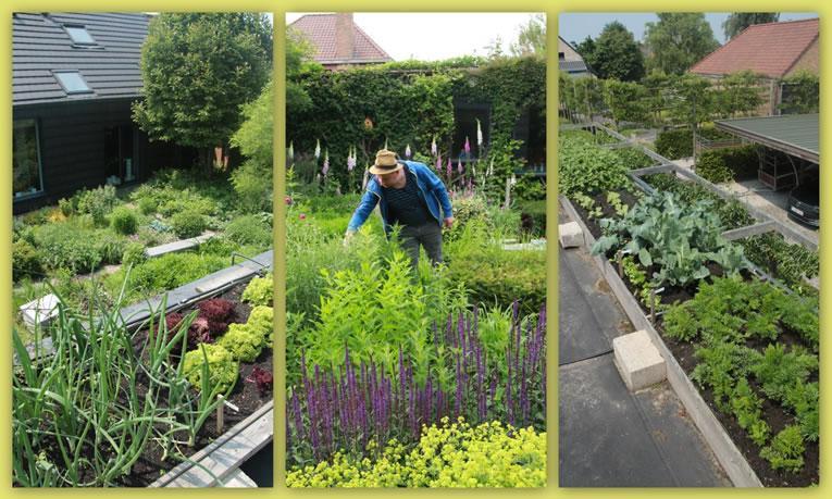 Open tuindagen 2017 for Voorbeeld tuinen kijken