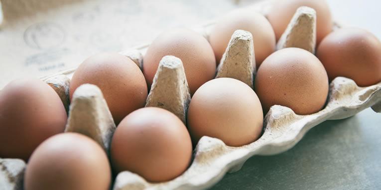 Alternatieven voor eieren