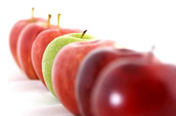 verschillende appelen - appelsoorten kiezen