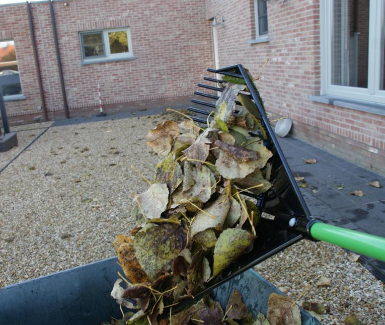bladeren ruimen in de tuin